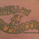 Mellow Mushroom Gluten Free Review – Charleston, SC